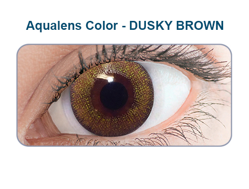 Aqualens dusky brown color contact lens (1 lens/box/Plano)  available at Lenskart for Rs.0